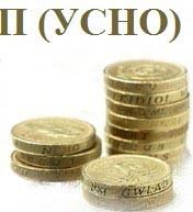 Упрощённая Система Налогообложения