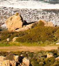 Северный Кипр дайвинг
