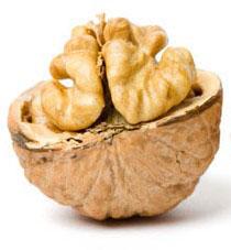 Вирощування горіха