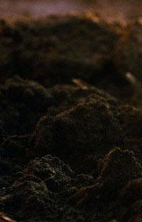 Склад ґрунту на ділянці