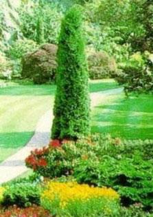 Догляд за садом