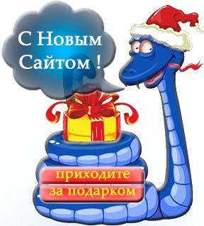 создание сайта,московская веб-студия Силвер Сайт
