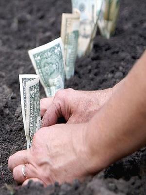вложить деньги в землю