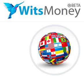 электронная платёжная система WitsMoney