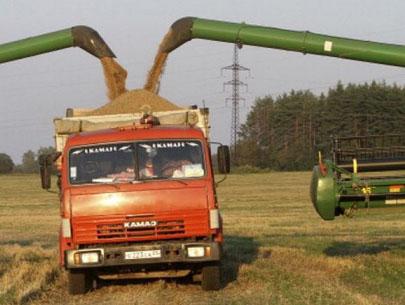 зерноперевозки украина