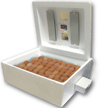 Инкубатор на 63 яйца