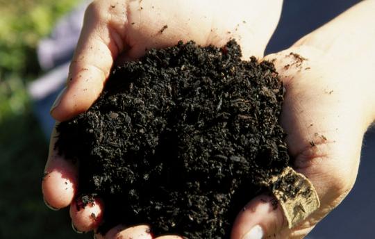 исследования почвы