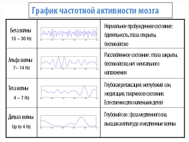 График частотной активности мозга